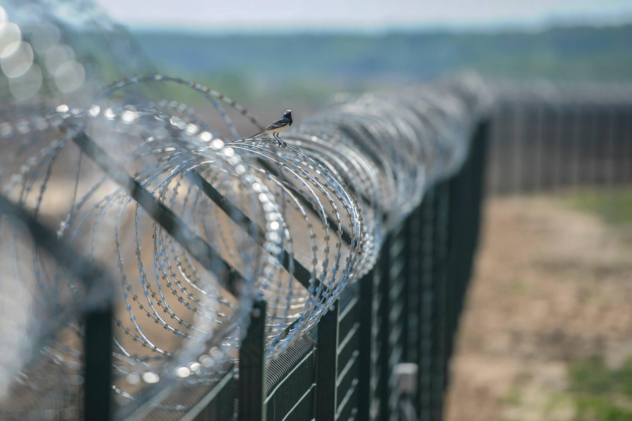 Афера века: суд арестовал очередных фигурантов по делу «Стены Яценюка»