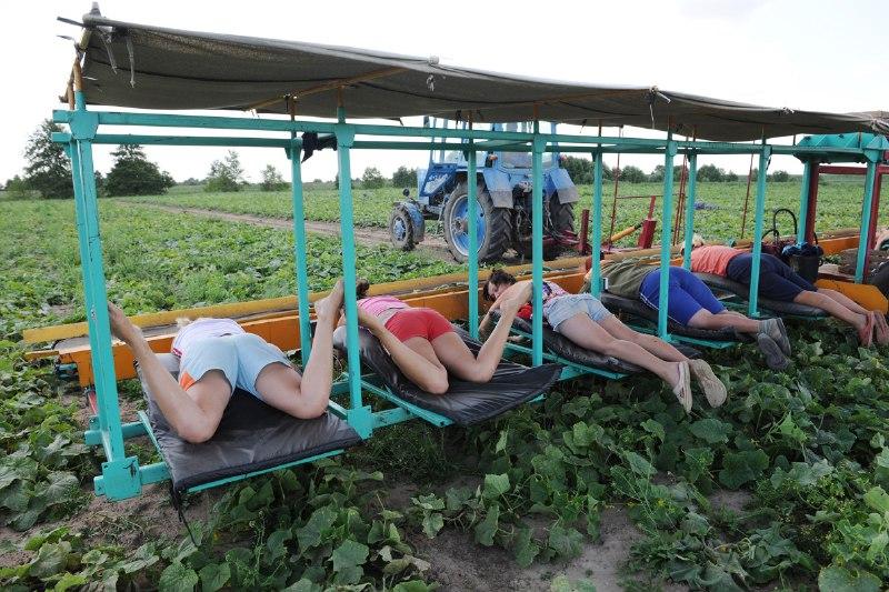 Украинцы отказываются от гражданства. Цифра впечатляет