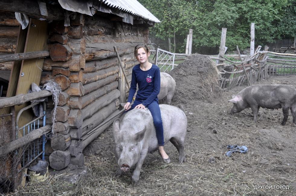 Турция с Египтом отдыхают: хит туристического сезона в Украине — дойка коз и копание картошки за деньги