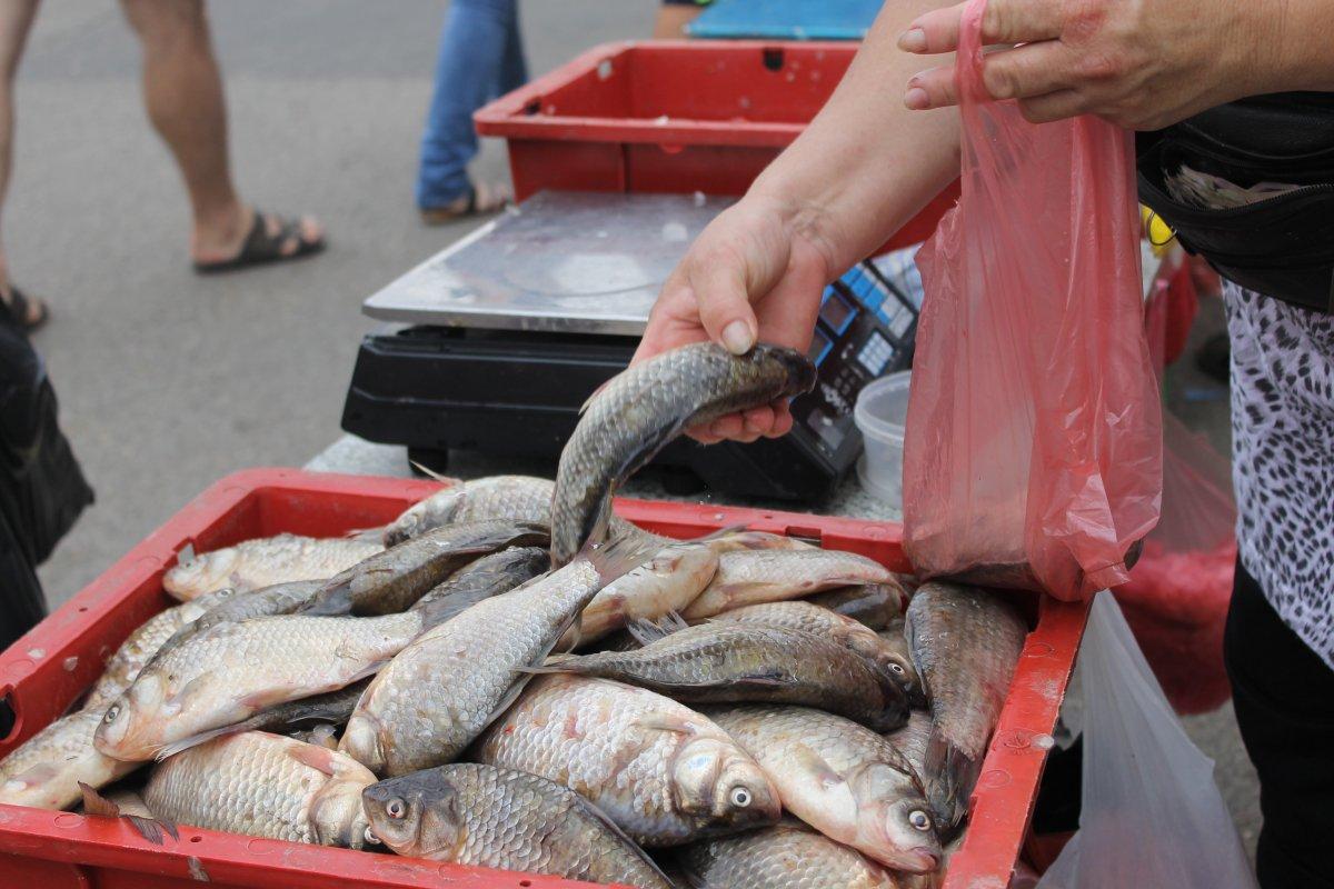 Грузовики дохлой рыбы из Запорожья отправились на рынки Украины! Будьте бдительны!