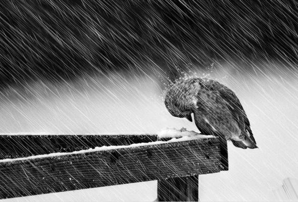 Погода в субботу: в Украину пришли холода и дожди