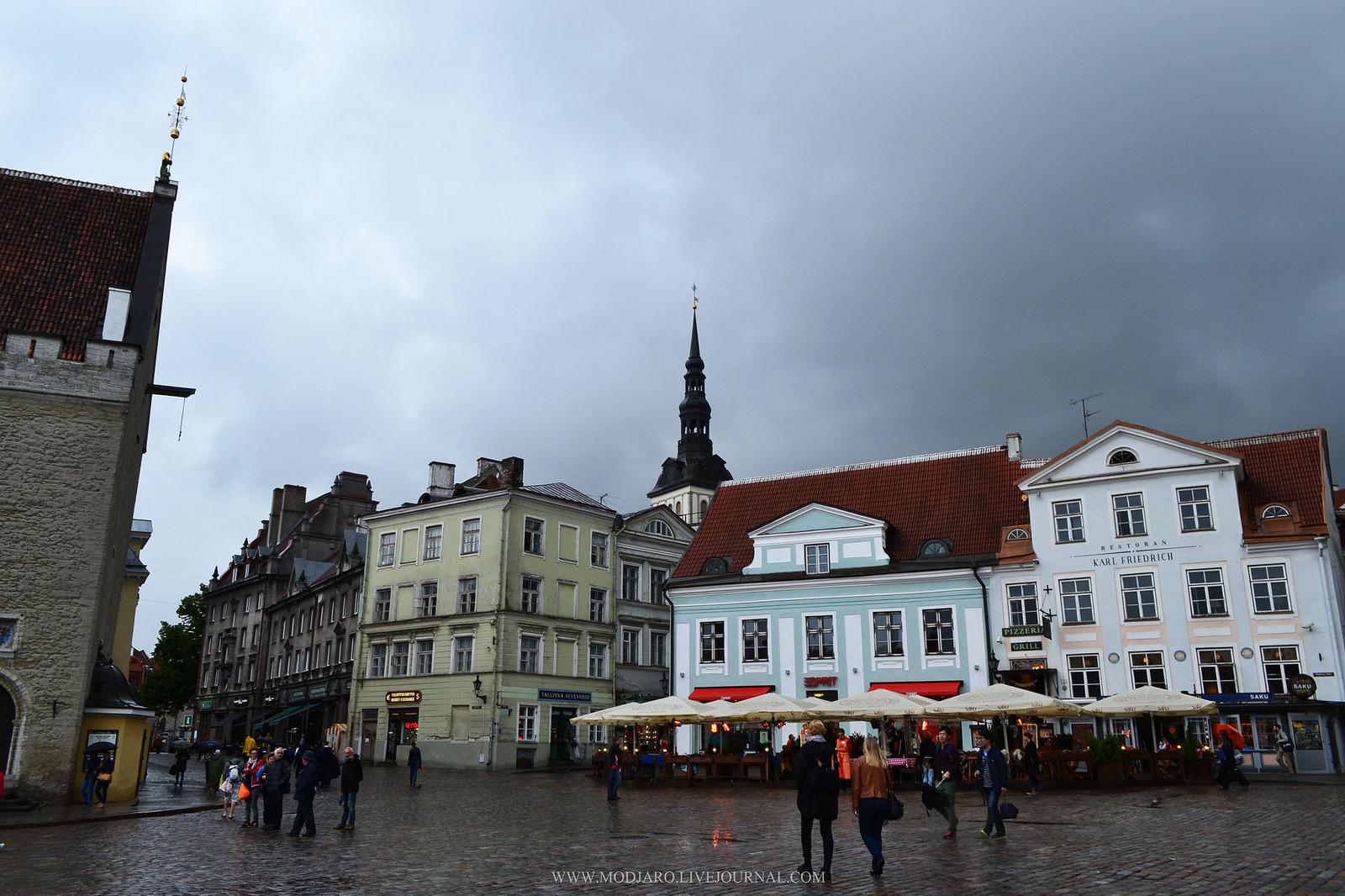 Вот это да: в Эстонии прошел черный дождь