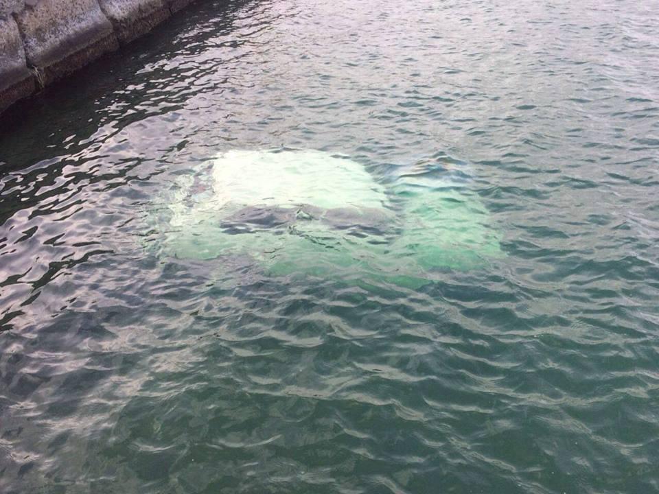 КОШМАР! В Одессе на дне моря обнаружили страшную находку