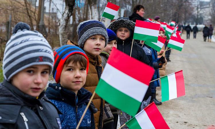 СРОЧНО! В Закарпатской области отсутствует украинское государство, – Саакашвили