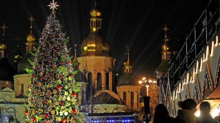 Главная новогодняя елка Украины: первые подробности о зеленой красавице