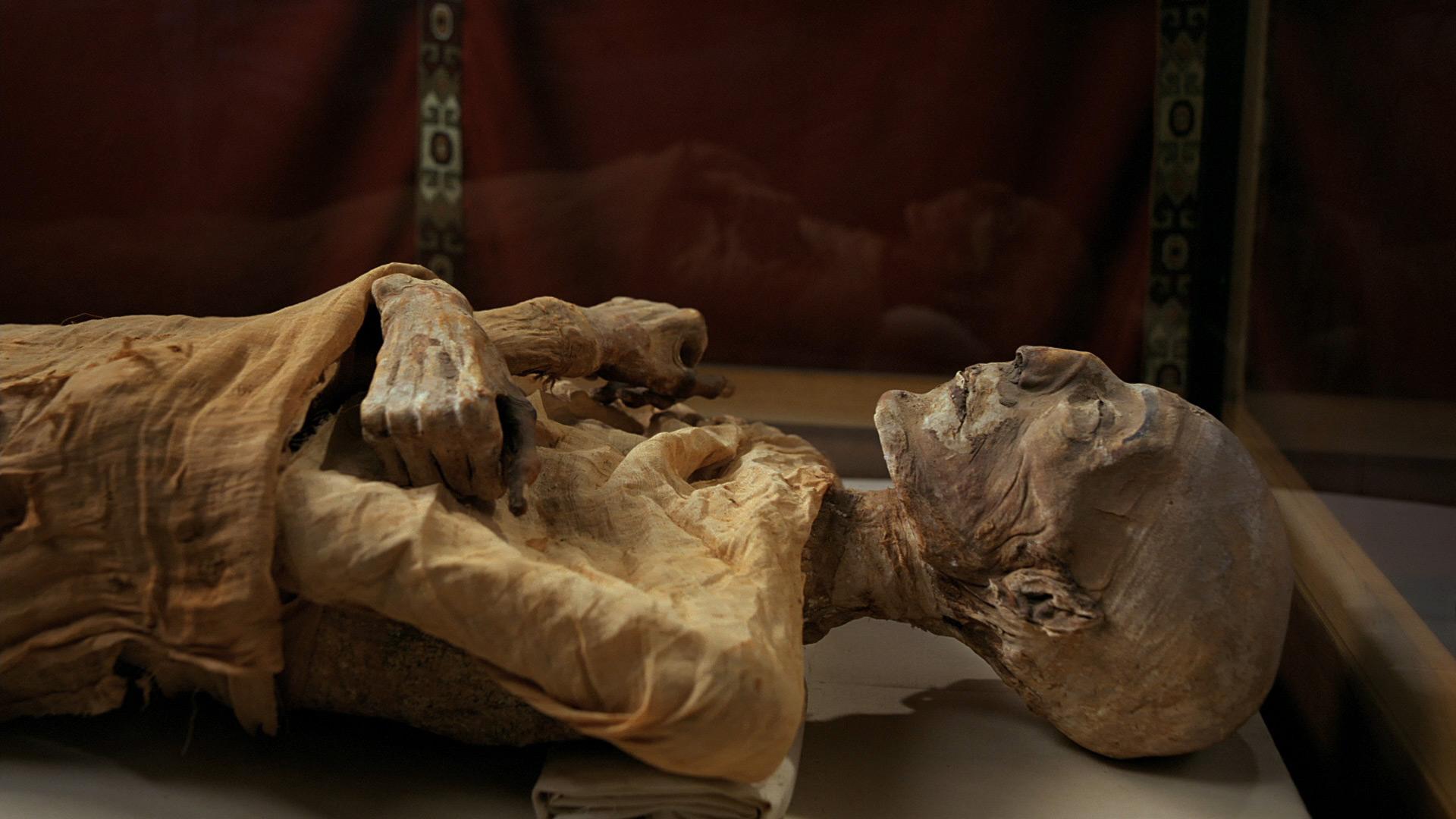 ЖЕСТЬ! Охранник музея изнасиловал самую старую бабушку. Она под ним рассыпалась