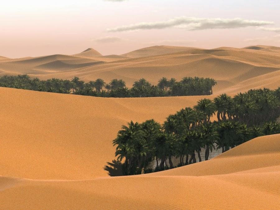 Ученые заявили о загадочной находке в аравийской пустыне! Узнайте подробности