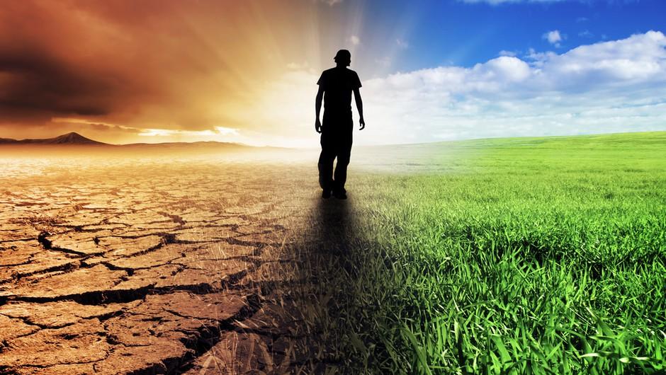 Климат лихорадит! Смесь пустыни и тропиков в Украине: реальность или вымысел?
